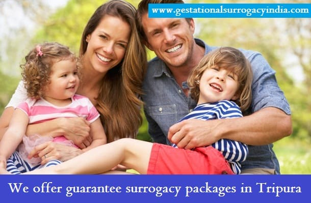 Surrogacy cost Tripura - Surrogacy cost Tripura- The financially supportive station for sterile couple