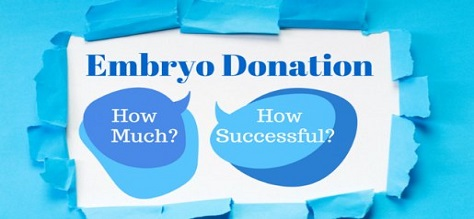 Embryo-Donation how successful