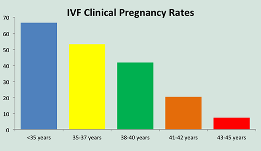 IVF Clinical Rates - Success Rate: