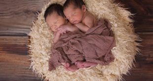 Chances of twins with IVF and two embryos